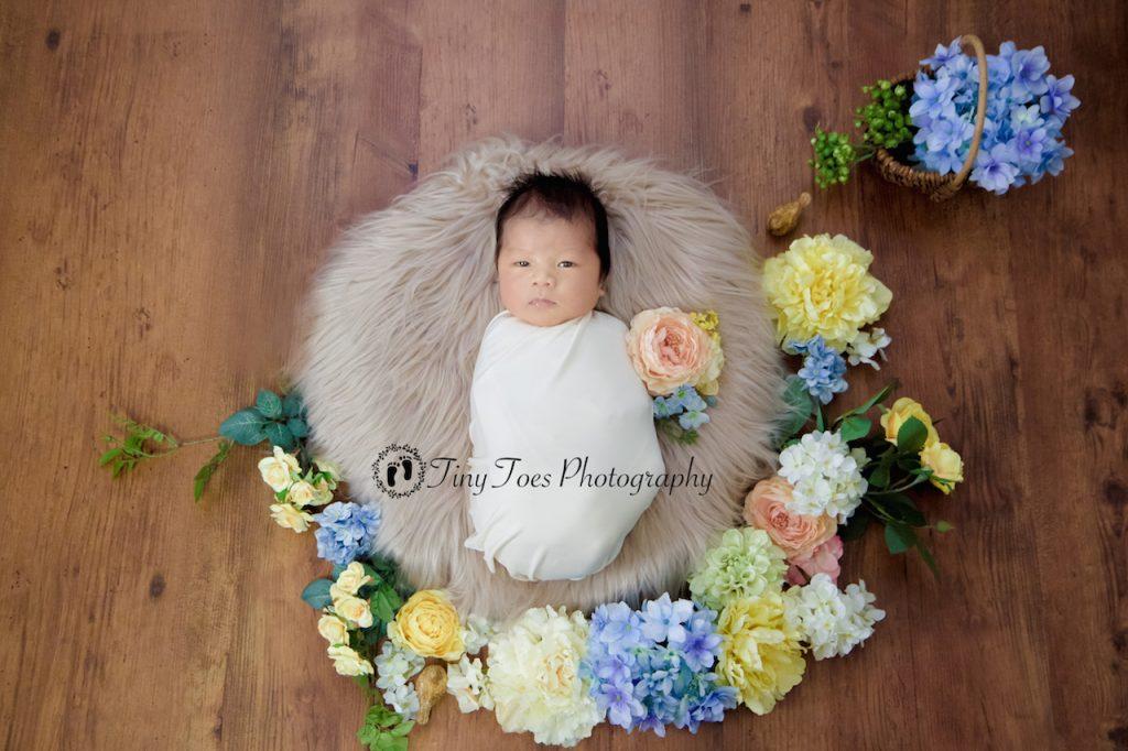 タイニートーズ生後12日目赤ちゃんニューボーンフォト新生児写真男の子