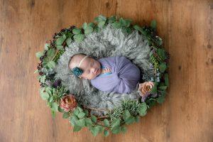 タイニートーズ新生児フォトニューボーンフォト女の子生後0ヶ月ネスト